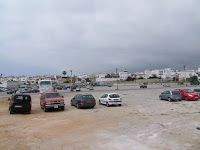 parkin-carabeo
