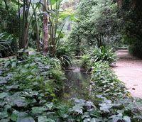 jardinbotanico-malaga