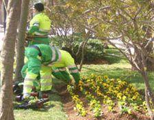 denuncia-jardineros
