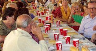 infonerja-comida-mayores