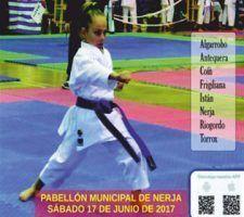 infonerja-karate