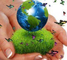 infonerja-medio-ambiente