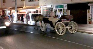 denucia-cochess-caballos