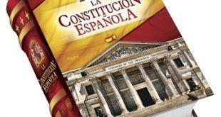 infonerja-constitucion