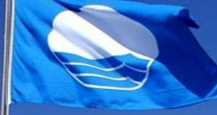infonerja-bandera