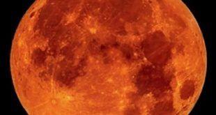 infonerja-eclipse