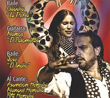 Noche flamenca en el Centro Cultural Villa de Nerja