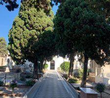 infonerja-cementerio