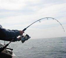 infonerja-pesca