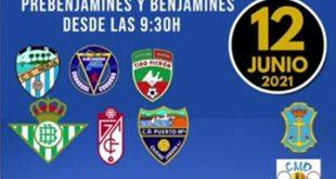 infonerja-futbol7